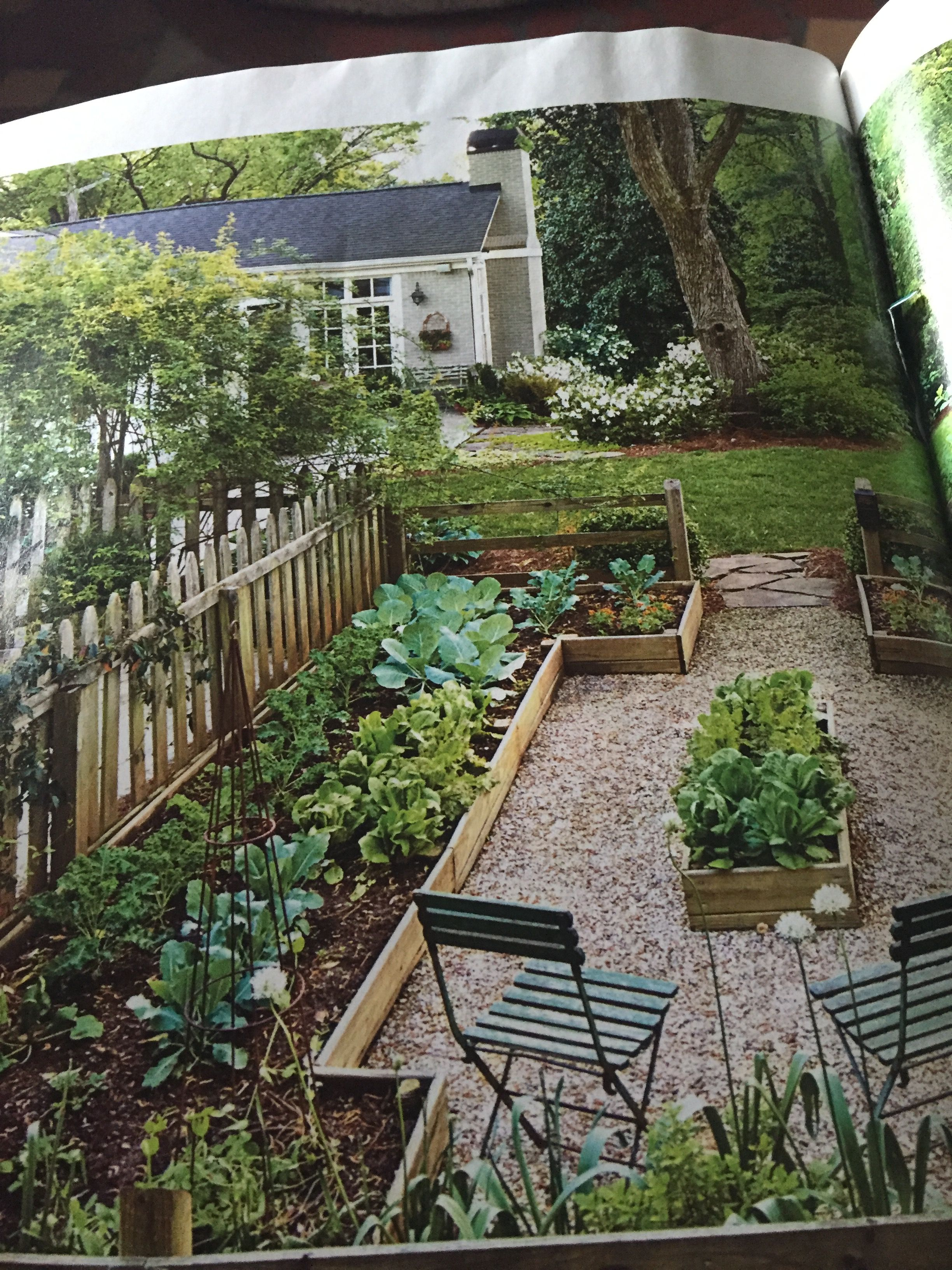 For Our Side Yard With Images Small Vegetable Gardens Garden
