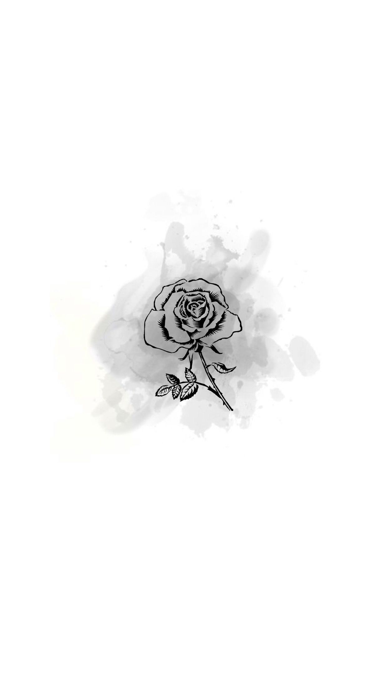 Biascardoso Story Highlights Instagram Story Lotus Lotus Flower Lily Gambar Kameras Ideias Instagram Logotipo Instagram Instagram