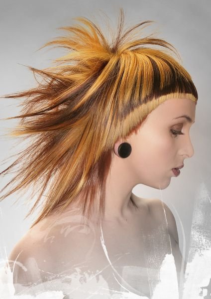 2015inspiration Giltysalon Giltypassion Www Giltypassion Com Greatness In Life Through Your Passion Hair Creations Hair Art Artistic Hair