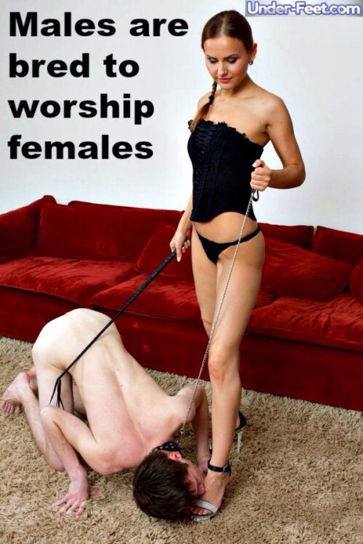 female supremacy