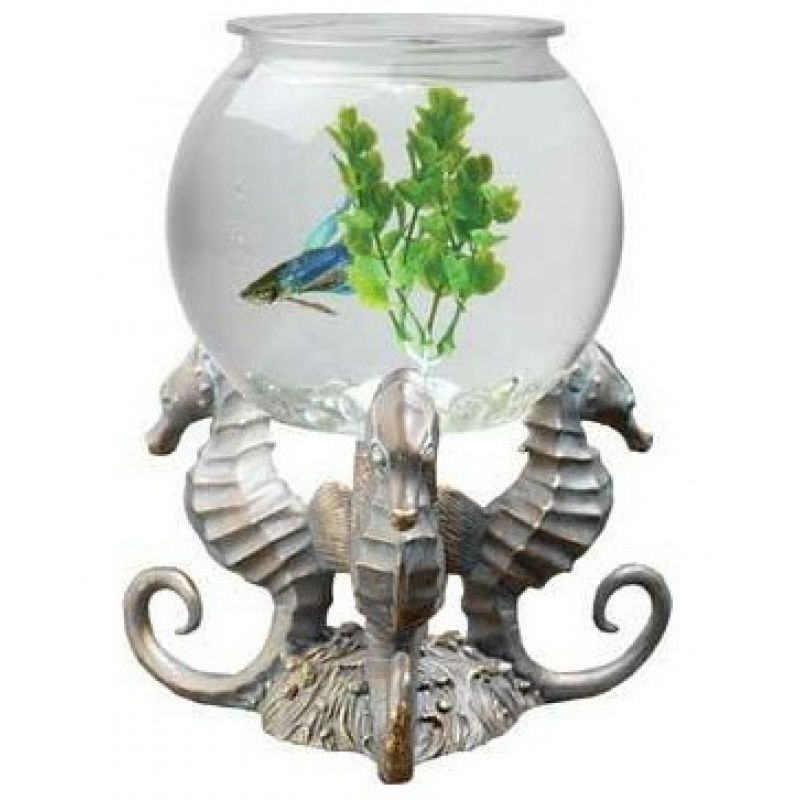 Tom aquatics betta treasures betta bowl with seahorse for Betta fish bowl ideas