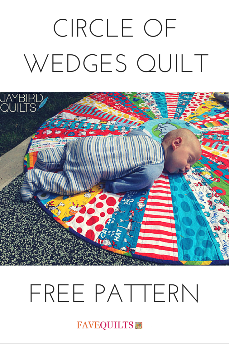Circle of Wedges Quilt Jaybird quilts, Baby quilts