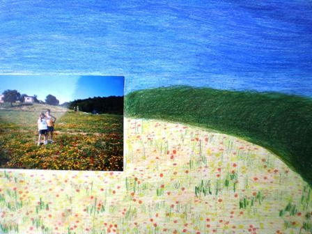 en un camp de flors