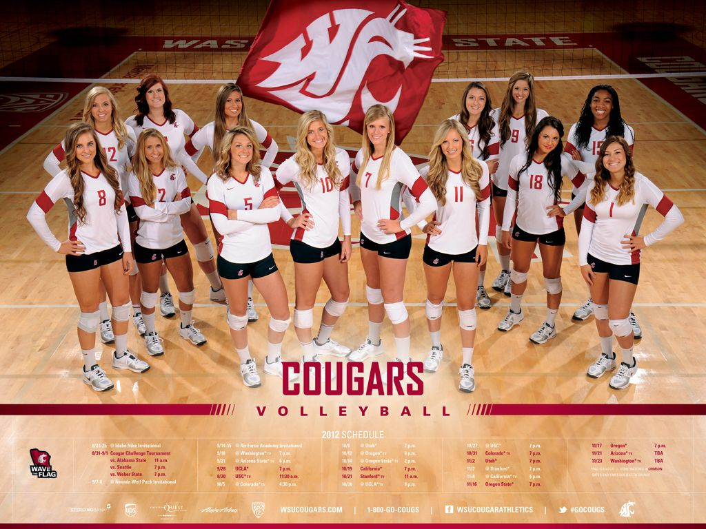 2012 Cougars Swimming Poster Free At All Swimming Evens Or Order Online Gocougs Cheerleading Photos Team Poster Ideas Team Pictures