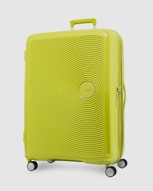 africano labios Dedicación  Curio Spinner 80/30 in 2020 | American tourister, American, Travel luggage
