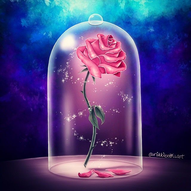 Enchanted Rose Drawing: The Enchanted Rose . Drawn In Sketchbook Pro With My Wacom