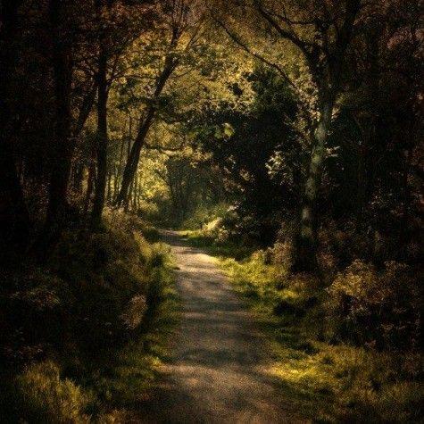 Landscape Photography by Alicja Rodzik