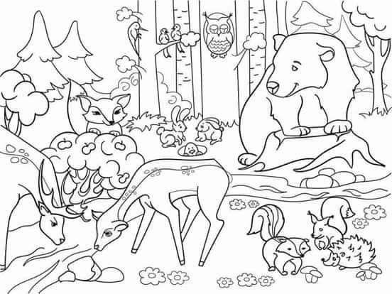 Pin De Leticia Urquiza En Ovoda Animalitos Para Colorear Animales Para Pintar Paisajes Con Animales
