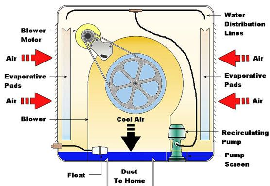 cut out viw of how a swamp cooler works | Goal: Dream Home | Pinterest