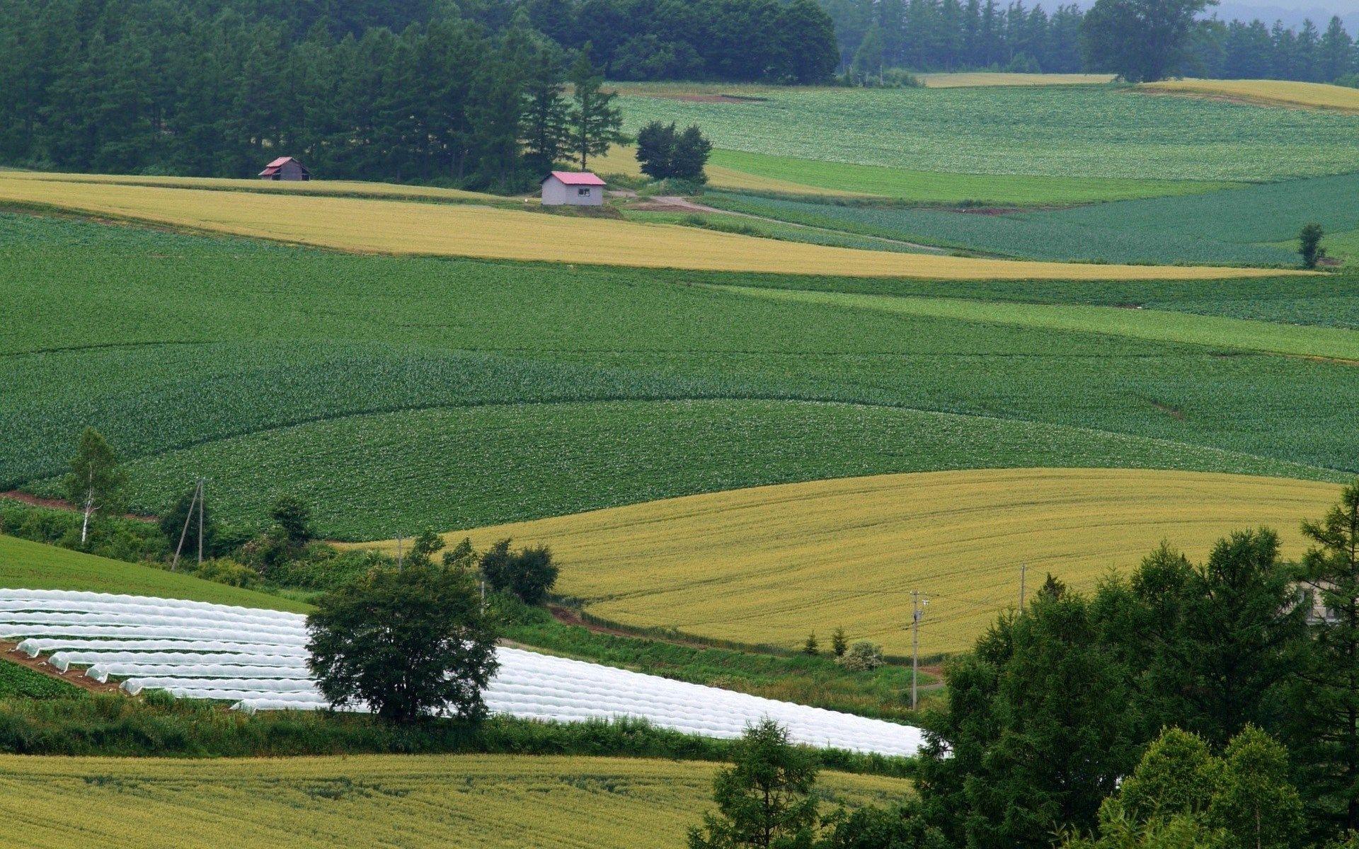 agriculture pic hd, Watson Kingsman 2016-09-13