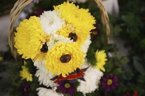 Flower Made Like Animals Dog Flowers Arrangements In The Shape Of Dogs