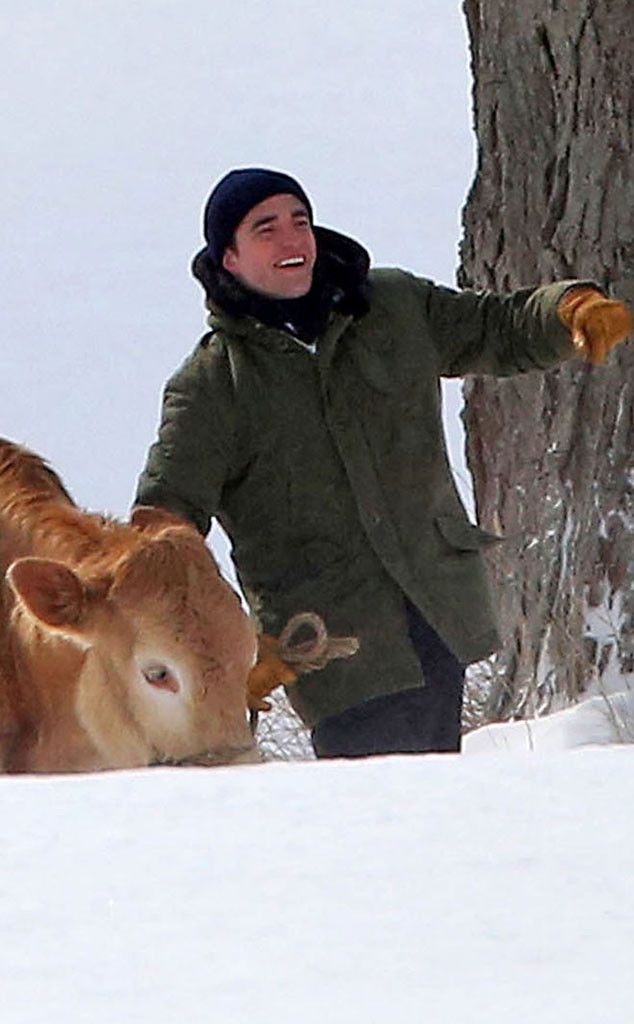 Robert Pattinson Films Scene With Some Cows—See The