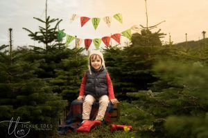 Pin On Christmas Mini Sessions