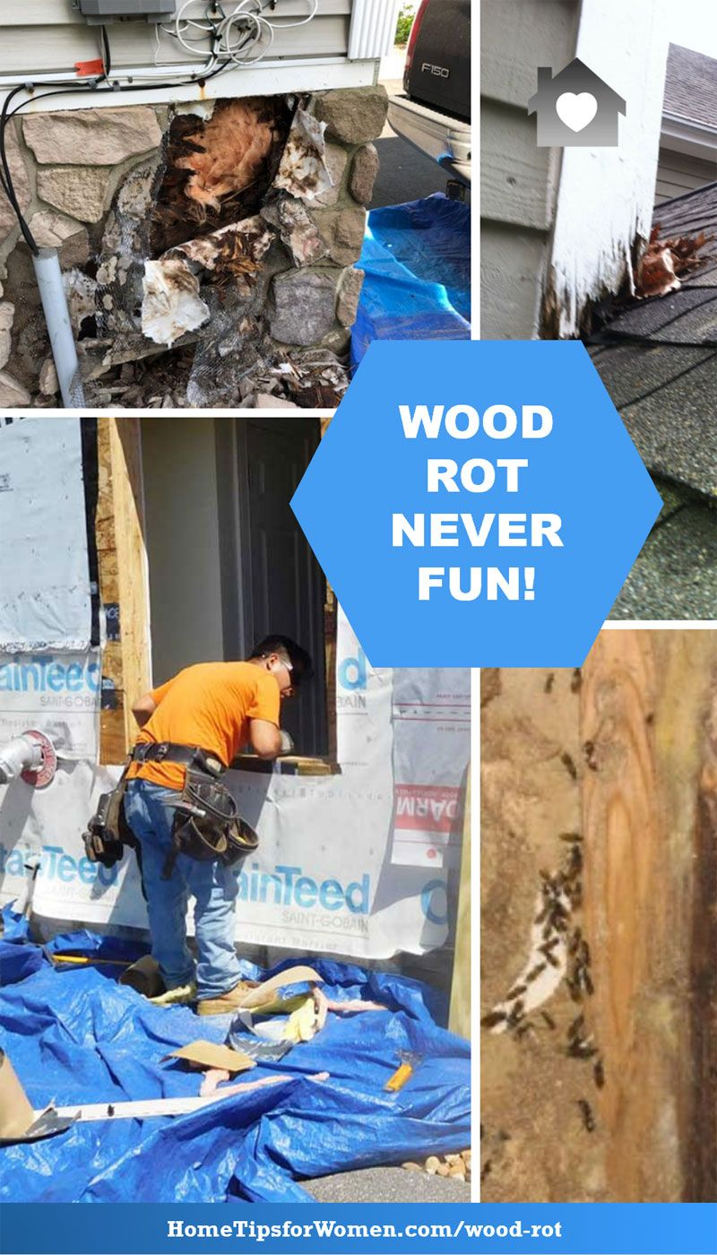 8 Wood Rot Repairs Your Home Might Need Home Hacks Home Repair
