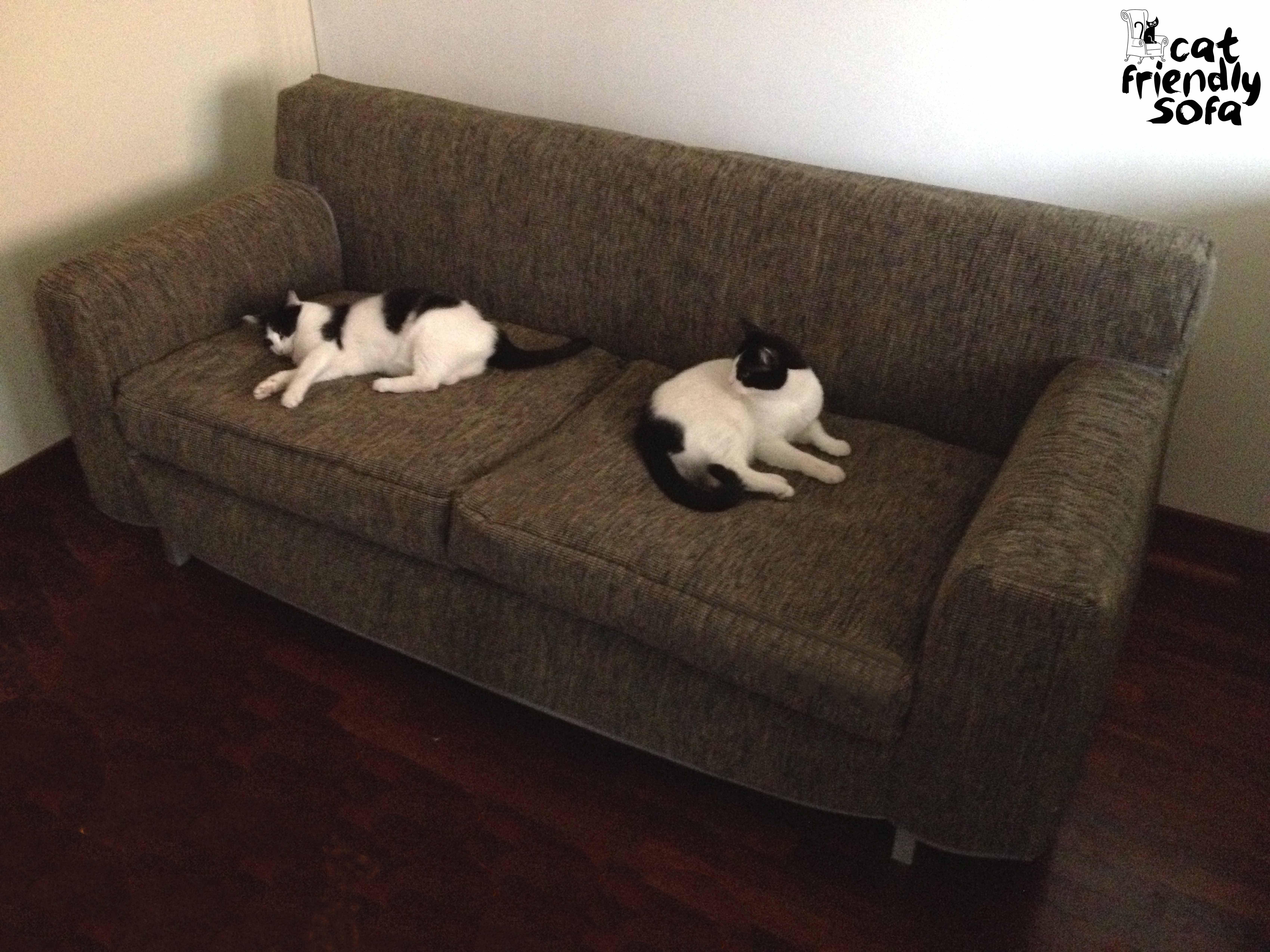 Cat Resistant Full Sofa Cover
