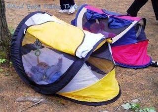 Pin On Camping Hiking Food Tips
