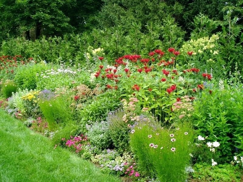 Sunny Garden Designs Perennial Flower Garden Designs Sunny Flower Garden Designs Flowe Perennial Garden Plans Perennial Garden Design Beautiful Flowers Garden