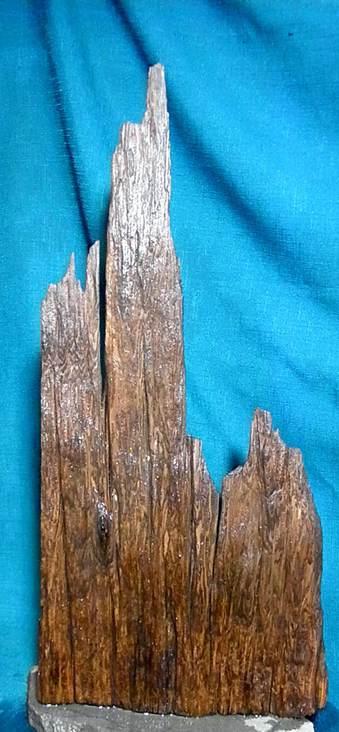 1000 Ideas About Aquarium Driftwood For Sale On Pinterest