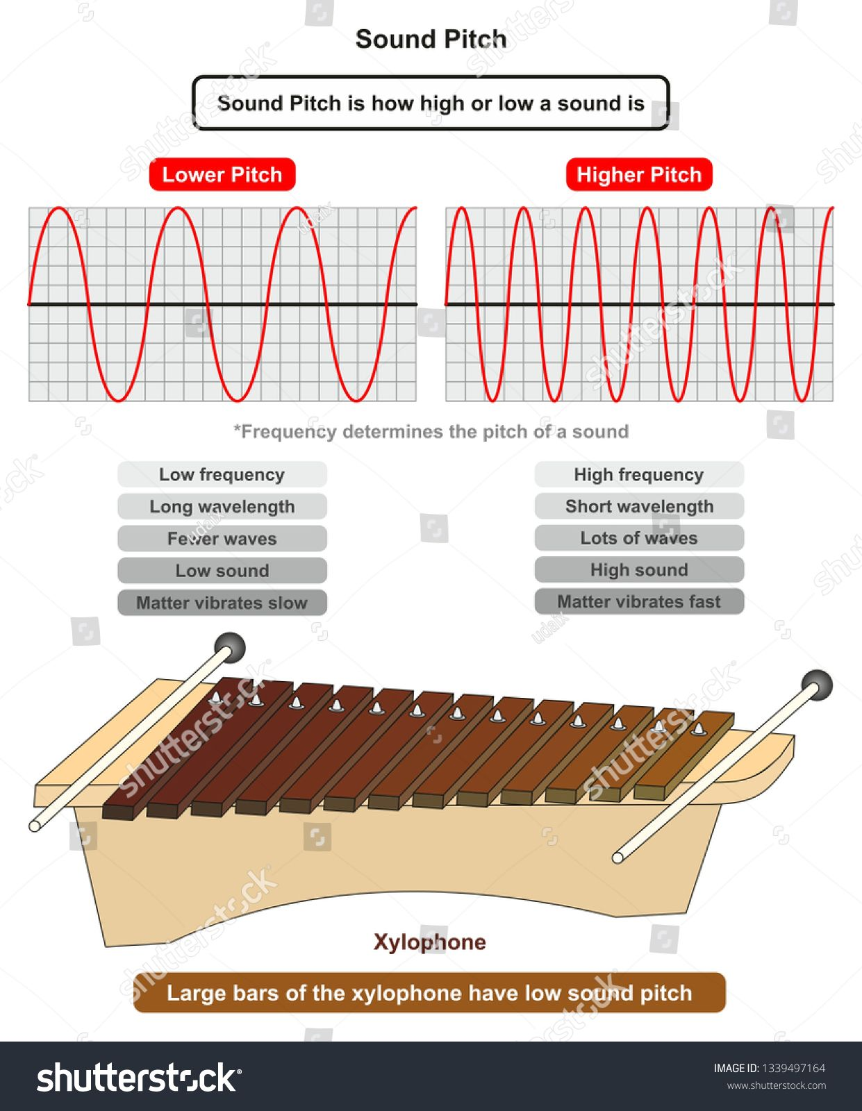 Sound Pitch Infographic Diagram Showing Comparison Of High And Low Frequency Sound Waves Also Example Of Xylophone Where La In 2020 Sound Frequencies Infographic Sound