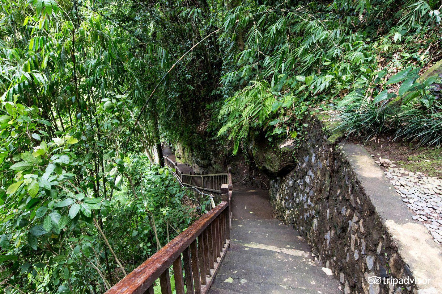Natura Resort and Spa (Ubud, Indonesia) - Resort Reviews ...