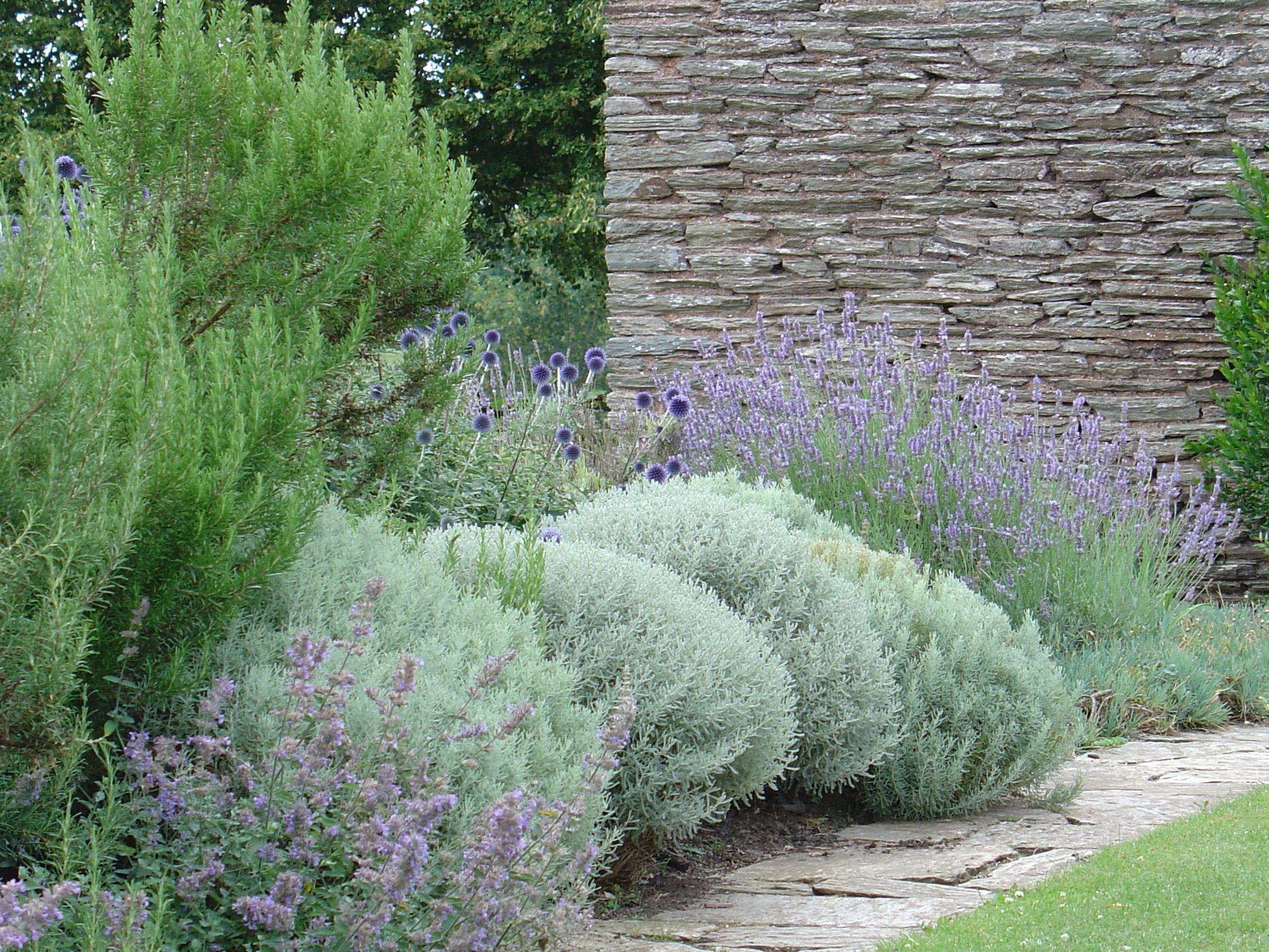 Planting For Sunny Free Draining Border Hestercombe Gardens Somerset Garden Design Bedford Gardens Blue Garden