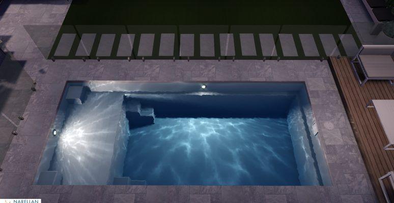 Nirvana Swimming Pool Plunge Pool Swimming Pool Builder
