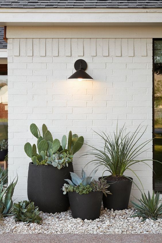 Potted plants, love the black is part of Front yard landscaping design -
