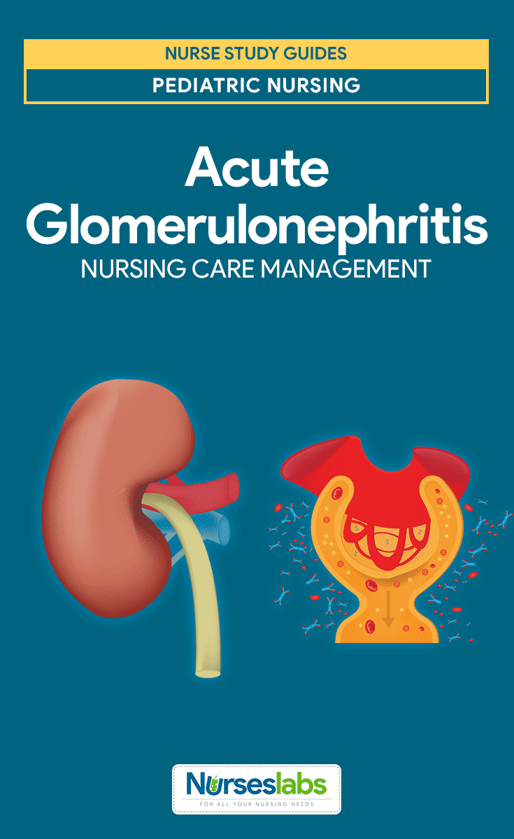 Chronic glomerulonephritis and organic solvents. A case ...