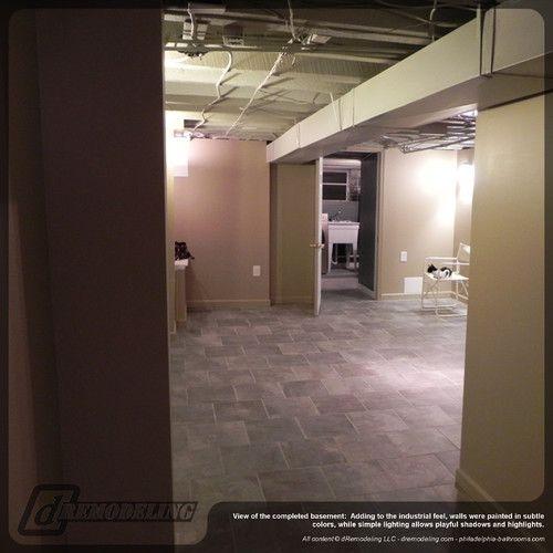 Contemporary Basement Design: Contemporary Basement Renovation Traditional Basement