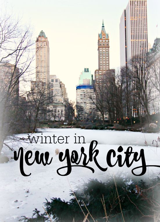 Trip Report Winter In New York City Hi Sugarplum  City