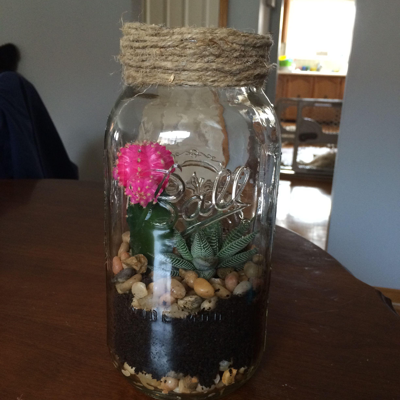 Diy Succulent And Cactus Terrarium In A Large Mason Jar Cactus Terrarium Large Mason Jars Mason Jars