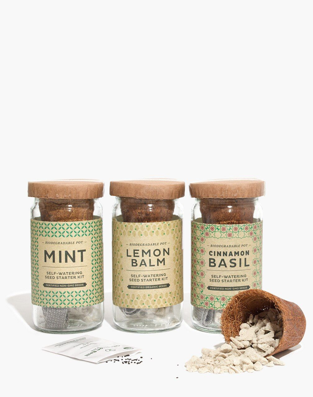Modern Sprout Cocktail Eco Seed Starter Kit Seed Starter Kit Starter Kit Starting Seeds Indoors