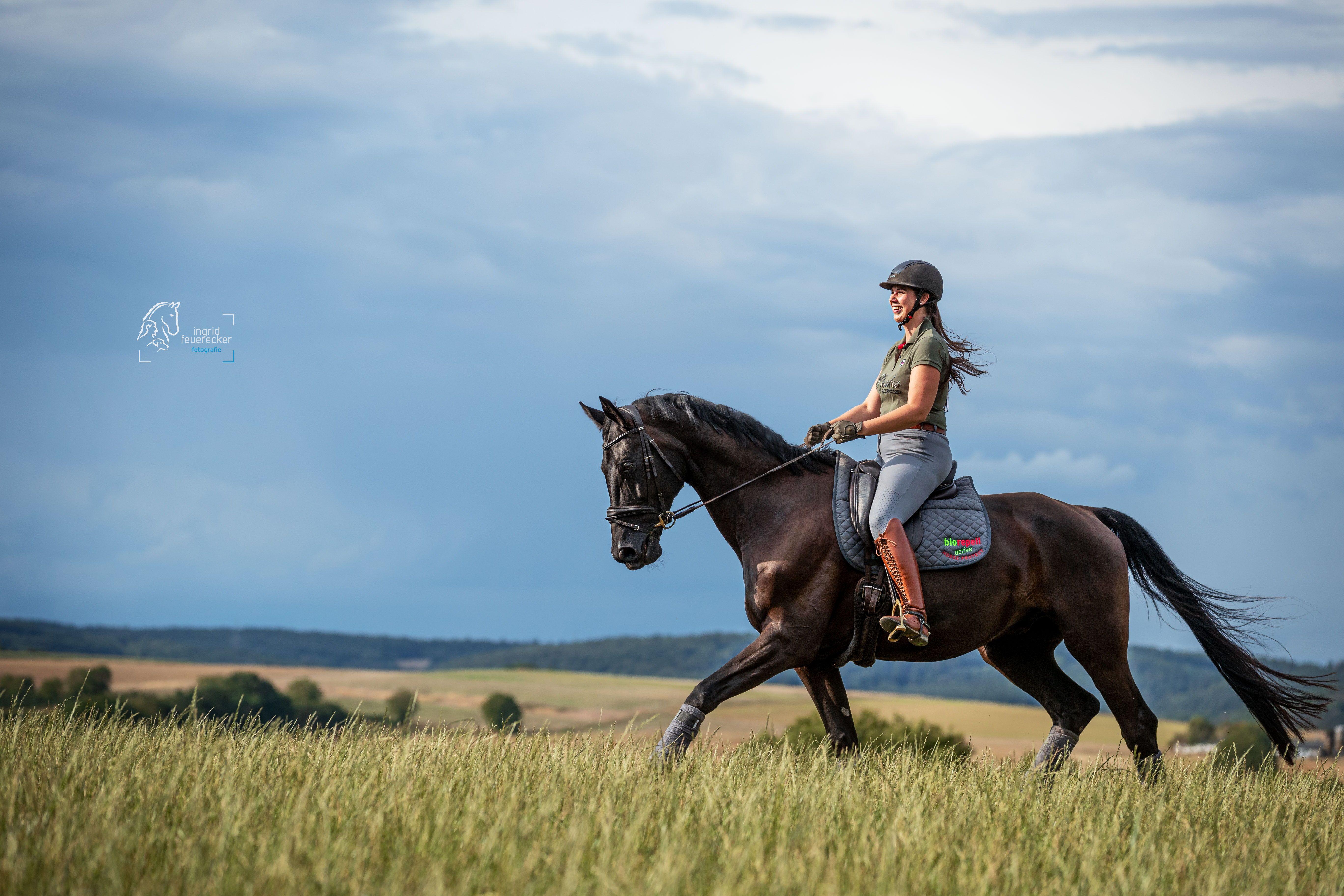 Pin Auf Pferdefotografie Portraits Von Pferd Und Mensch