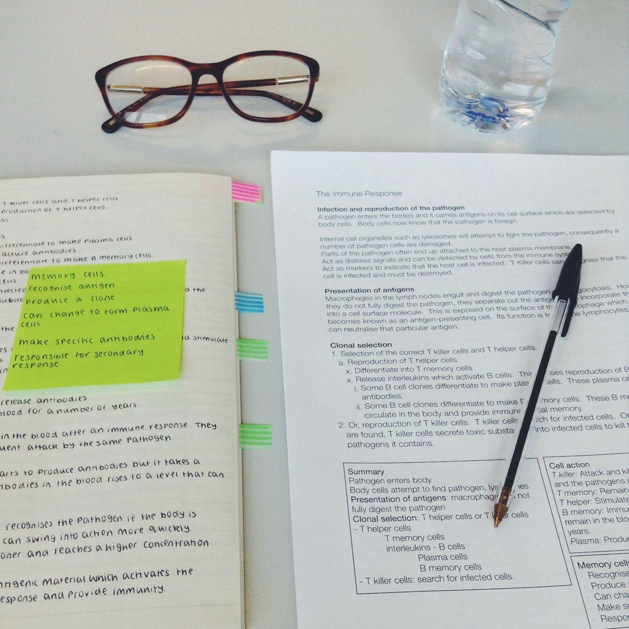 hstudies:  Revising at school for my last exam