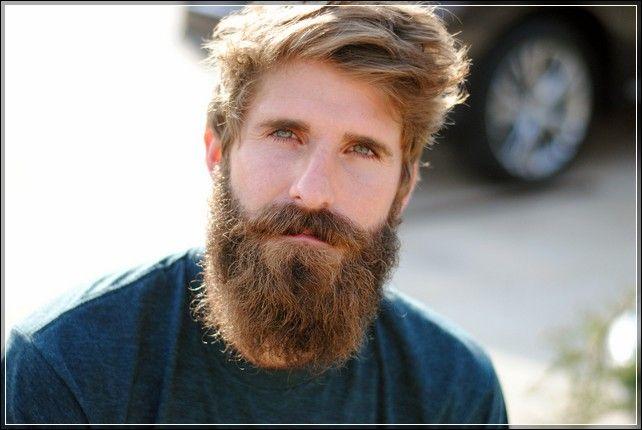 http://www.frogcreekbooks.com/wp-content/uploads/2014/10/beard-styles-short-hair.jpg