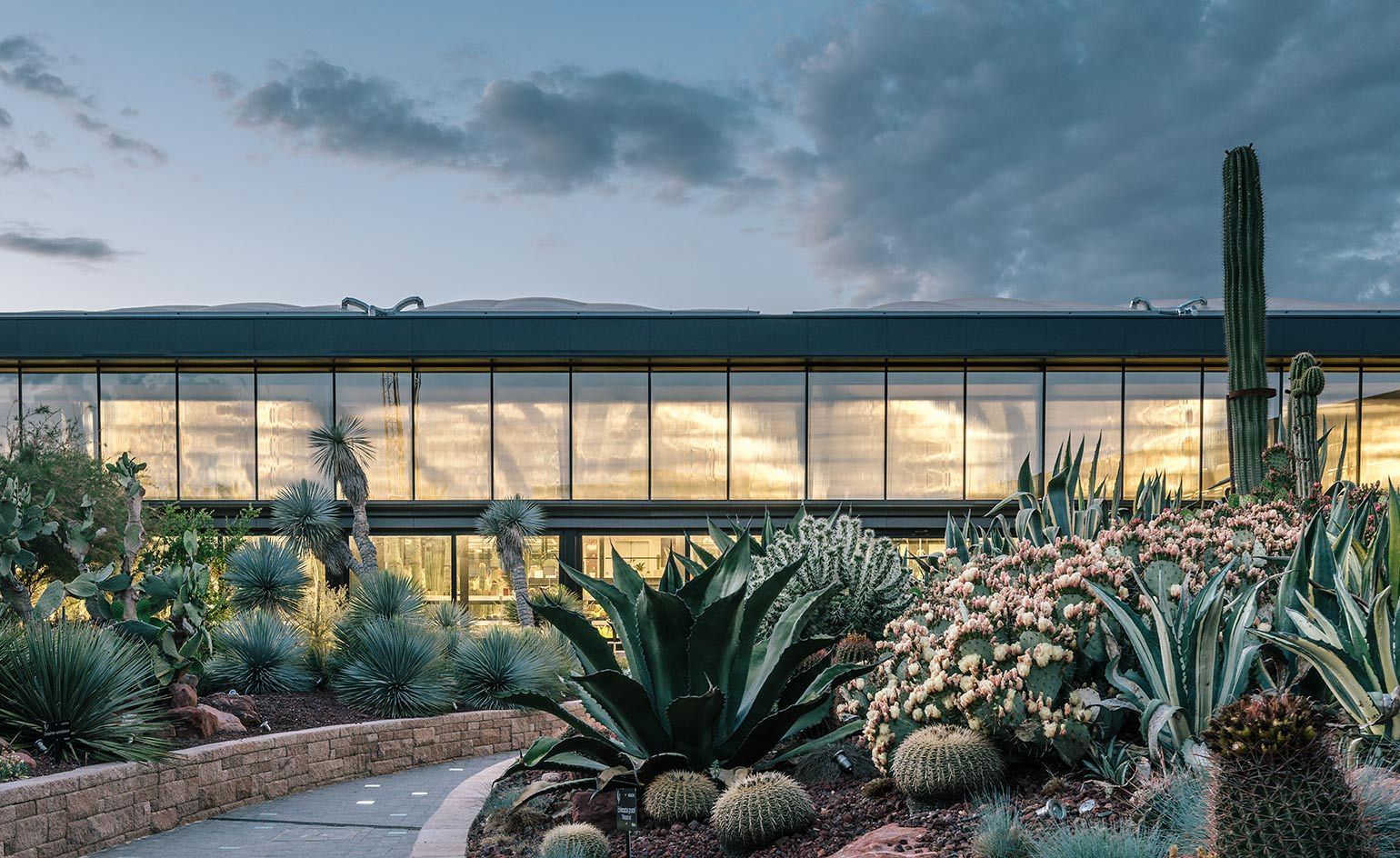 New Roots Europe S Largest Cactus Garden Springs From An