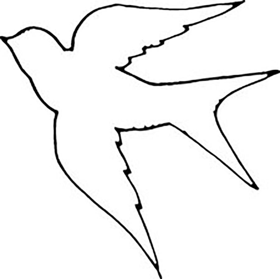 Раскраски Контуры птиц ласточка контур птица шаблон для вырезания