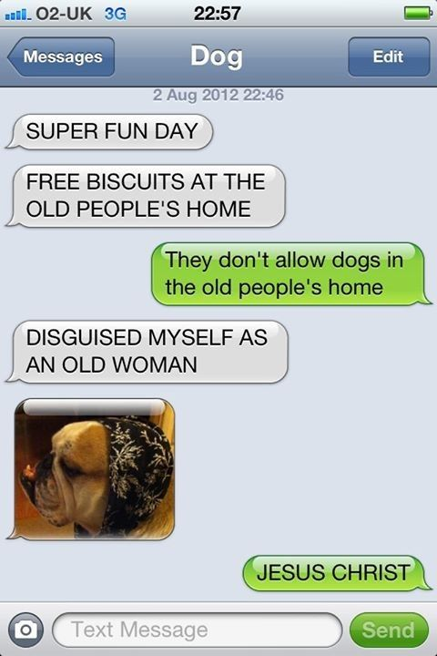 Hilarious Things Dogs Would Say If They Could Talk Funny Dog