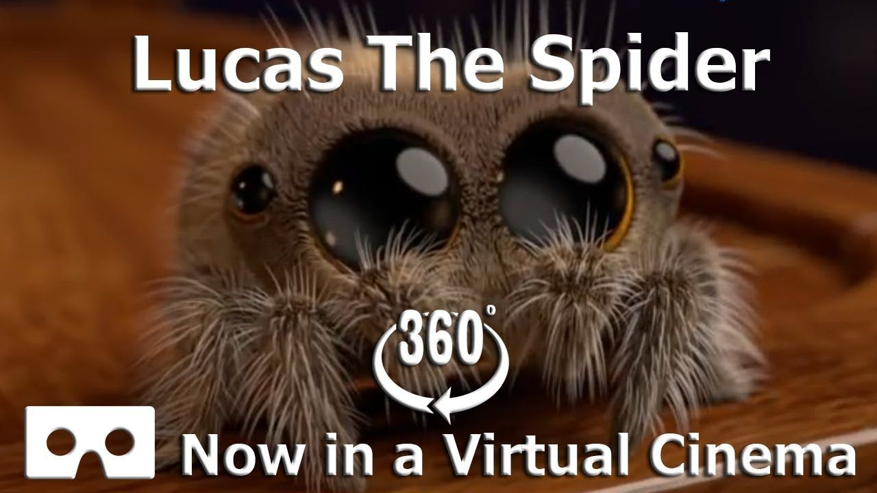 Lucas The Spider With Images Lucas The Spider Spider Lucas