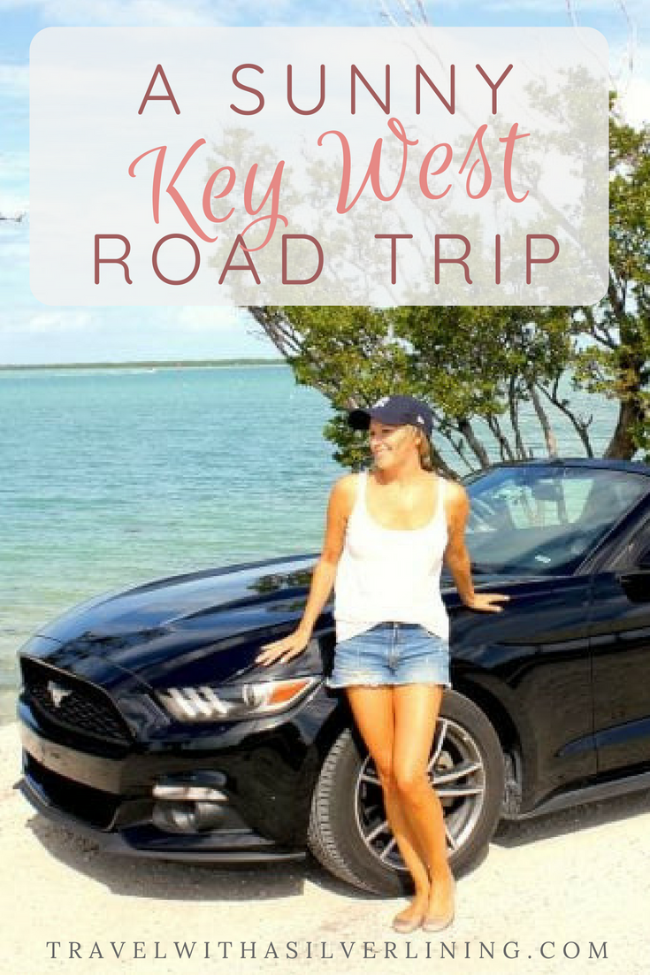 Things To Do In Florida Florida Travel Guide Florida Road Trip Florida Travel Guide Florida Travel Female Travel Blog