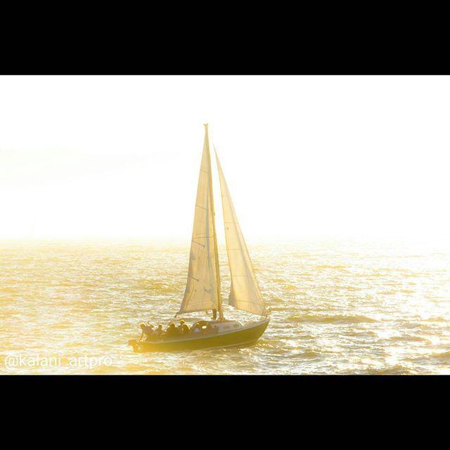 #nikon #photography #sailing #sunshine #california #marina
