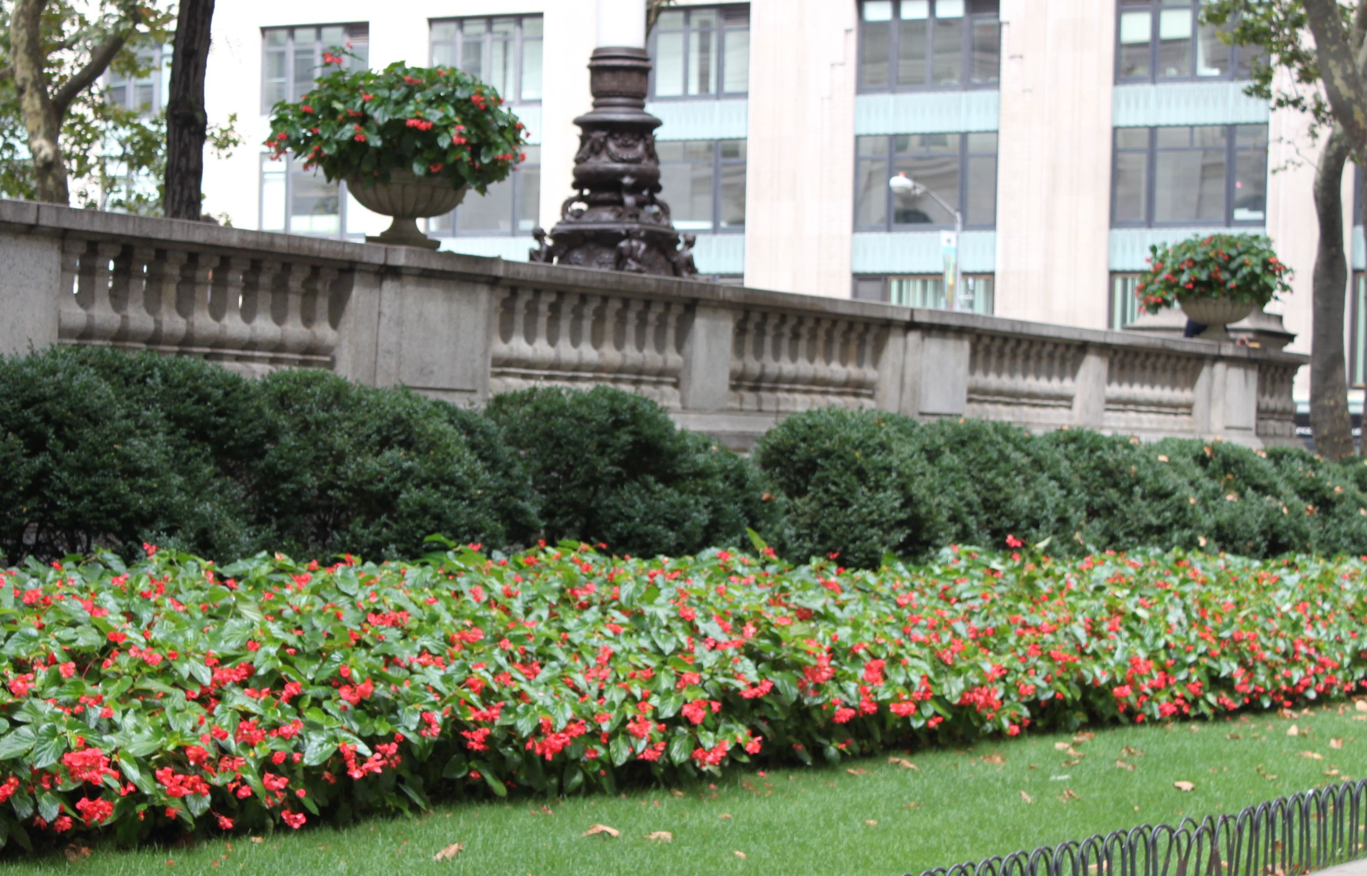 5th Avenue Garden. NYC 2012.