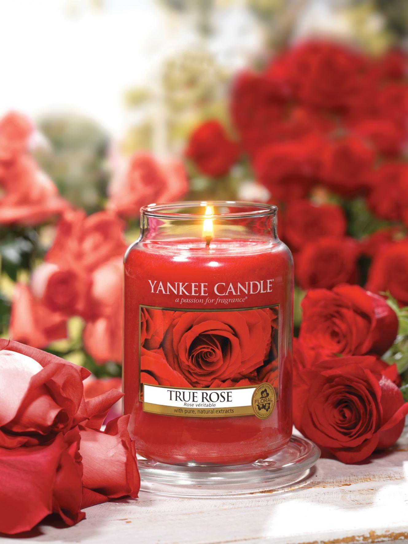 Yankee Candle True Rose Http Eshop Vasekuchyne Cz Yankee