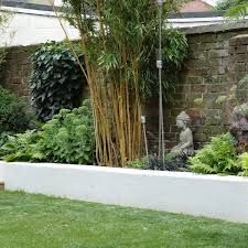 Image Result For Planting Bamboo With Other Plants. Asian Garden PlantingBambooGarden ...
