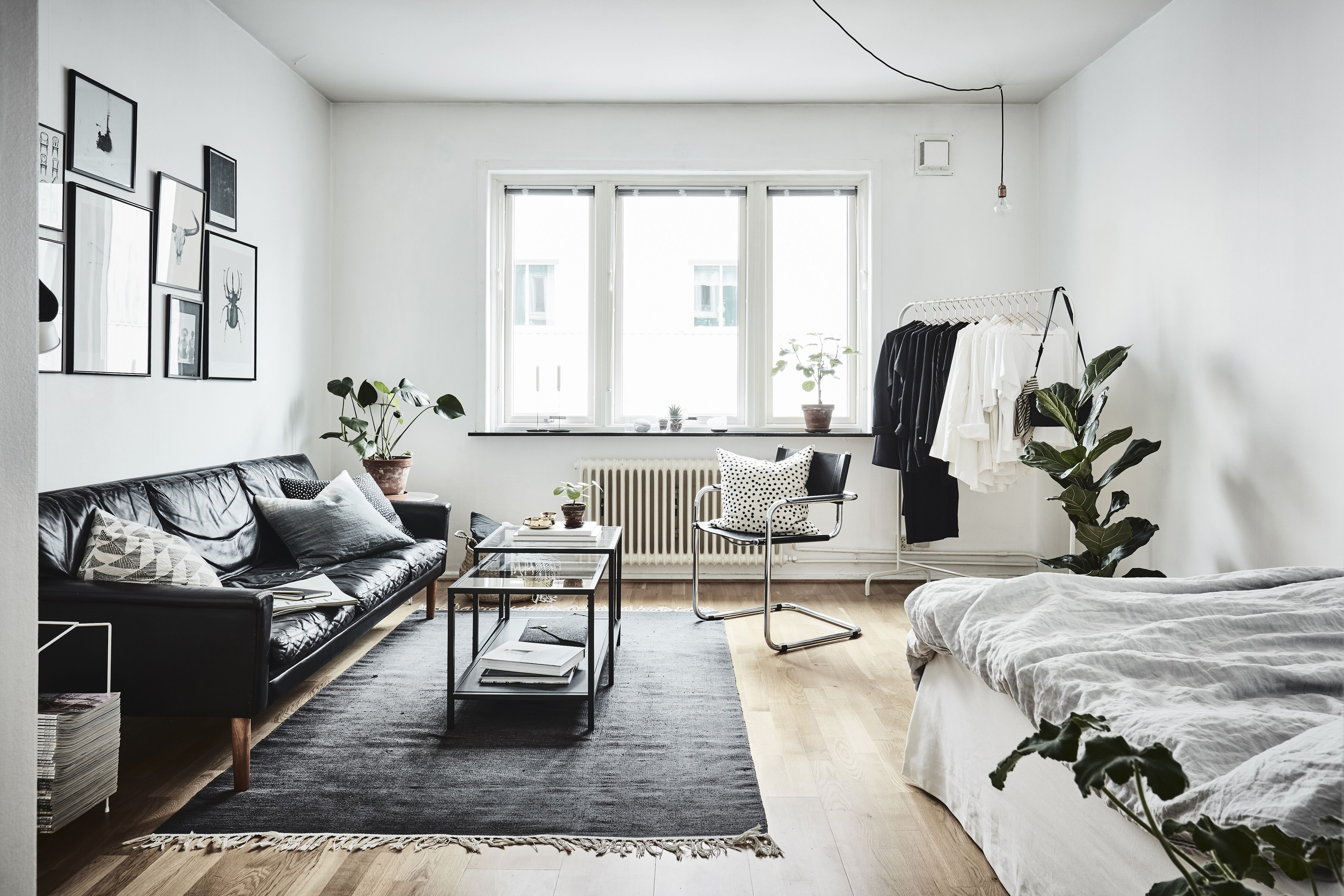 A Tour of My San Francisco Studio Apartment Advice from a 20