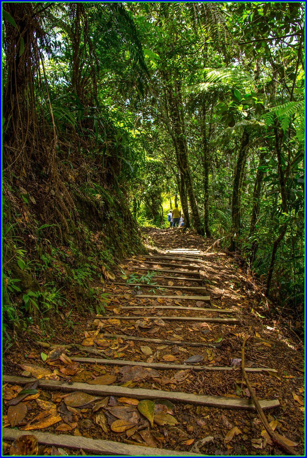Parque Nacional Cerro Azul Meámbar  PANACAM - HONDURAS