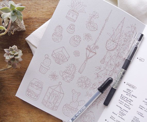 Coloring Pages For January Month : Hand drawn succulents and bonsai plants as coloring pages these