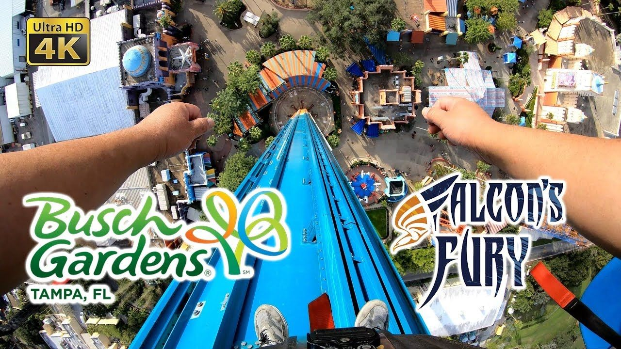 2018 Falcon S Fury 335 Ft Drop Tower On Ride Ultra Hd 4k Pov Busch Garde Busch Gardens Tampa Busch Gardens Fury