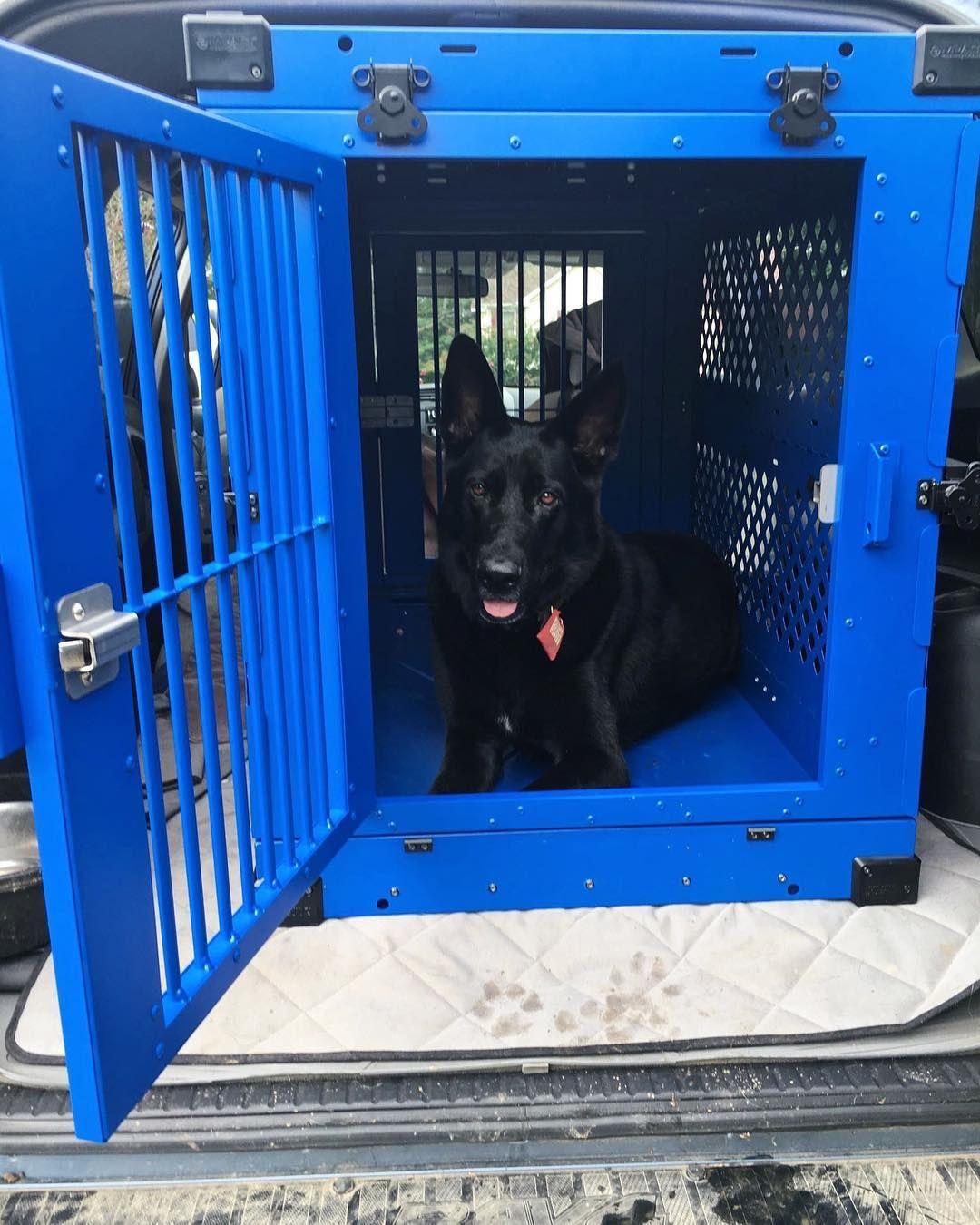 42 3 Door Blue Folding Dog Crate Cage Kennel N Divider Check