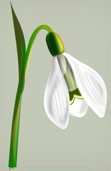 Vector Clip Art Online Royalty Free Public Domain Clip Art Art Quilts Fondant Flower Tutorial